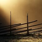 11.11.2013: Old Fence, Morning Light by Petri Volanen