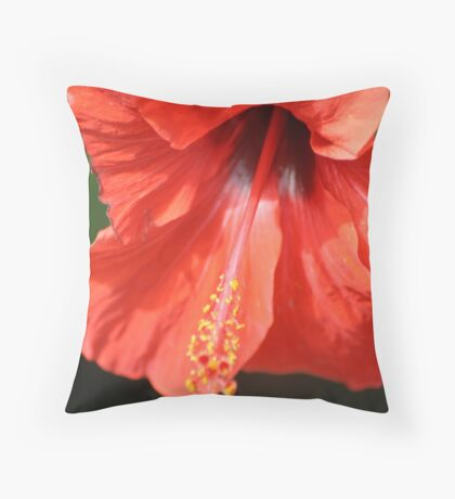Red Petal and Anther with Pistil of Hibiscus Flower Throw Pillow
