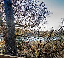 Fall 2  by MykeDee