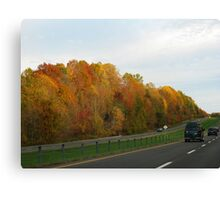 Drive By Canvas Print