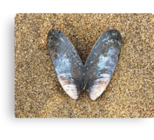 Musselfly Canvas Print