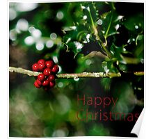 Christmas Card - Holly Poster