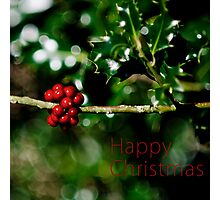 Christmas Card - Holly Photographic Print