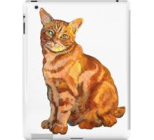 Salt Water Tabby Graphic ~ Full color iPad Case/Skin