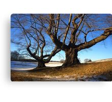 2013 Calendar - Winterthur - March Canvas Print