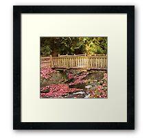 Renfrew Ravine footbridge Framed Print