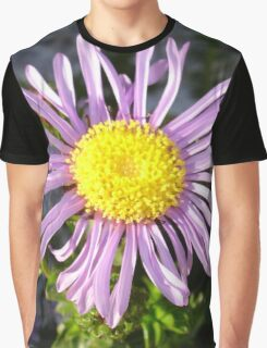 Magenta Aster - A Star of Love and Fidelity Graphic T-Shirt