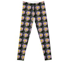 Magenta Aster - A Star of Love and Fidelity Leggings