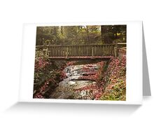 Renfrew Ravine - A bridge for all seasons Greeting Card