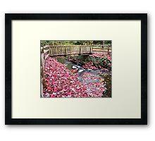Renfrew Ravine - Scarlet rapids Framed Print
