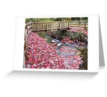 Renfrew Ravine - Scarlet rapids Greeting Card