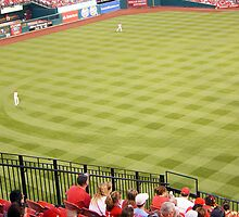 Busch Stadium Baseball Field by caljaysoc