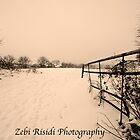 FIELDS OF SNOW….. by Zebi Risidi