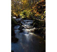 Autumn on Wyming Brook I Photographic Print
