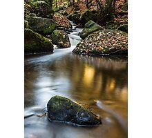 Autumn on Wyming Brook III Photographic Print