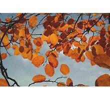 Lovely Autumn Mozaic Theme Photographic Print
