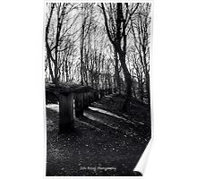 LONELY WALKWAY……. Poster