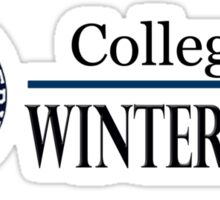 College of Winterhold Sticker