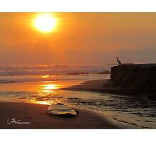 Sunset with Egret and surfboard Photographic Print