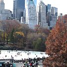 Ice Skating at the Wollman Rink, Autumn Colors, Central Park, New York City by lenspiro