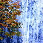 autumn waterfall 1 by Jennifer J Watson
