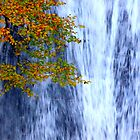 autumn waterfall 2 by Jennifer J Watson