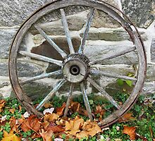 Wagon Wheel by Christina Zettner