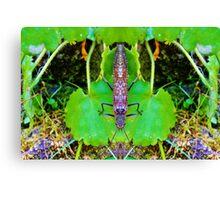 Bug 50 Canvas Print