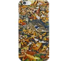 Duck amougst the leaves iPhone Case/Skin