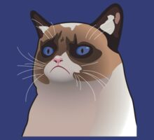 Grumpy Cat by stfubaker