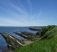 St Andrews Coastline on Beautiful Day by Adrian Wale
