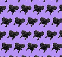 Purple Chocolate Lab Color Pattern by pupsofnyc