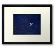 ©BPS Spider On The Wind IIB Framed Print