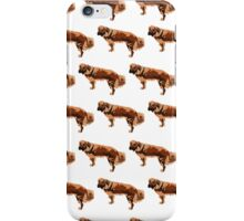 Baby Blue Mutt White Pattern iPhone Case/Skin