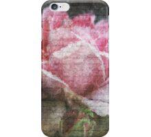 Vintage Old English Rose iPhone Case/Skin