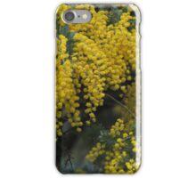 Wattle in bloom - Stokes Bay Bush Garden, Kangaroo Island iPhone Case/Skin