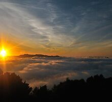 Signal Hill Sunrise by ColinGaleImages