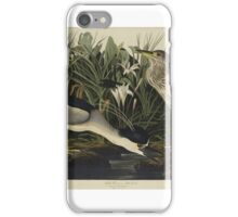 John James Audubon (Jean-Jacques Audubon) (1785 – 1851), NIGHT HERON OR QUA BIRD, FROM THE BIRDS OF AMERICA iPhone Case/Skin