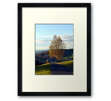 Tree, road and indian summer evening II | landscape photography Framed Print
