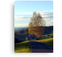 Tree, road and indian summer evening II | landscape photography Canvas Print