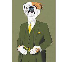 A Refined English Bulldog Photographic Print