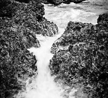 Tonga - Water flow #8 by Derek  Rogers