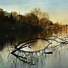 Still Waters Run Deep by BobbieC