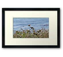 Flowers by the Sea Framed Print