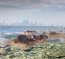 Lake Life by Igor Zenin