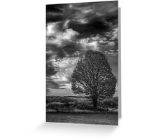 A Tree, All Alone Greeting Card