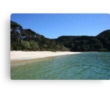 Abel Tasman Beach - New Zealand Canvas Print
