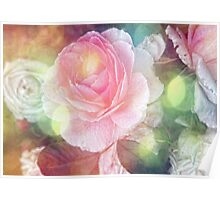 Romantic vintage Rose Poster