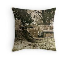 How the mighty have fallen Throw Pillow
