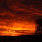 A November Sunrise by Jean Martin